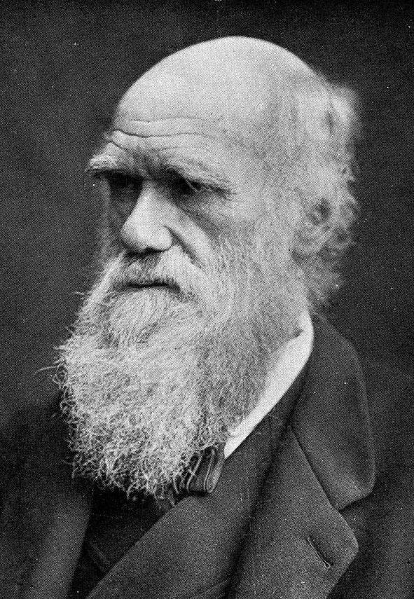 Charles Darwin Paul Hague